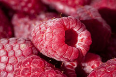Group of  fresh red raspberries close up Stock Photos