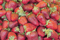 Group of fresh red strawberry. Red background with fresh strawberry stock photography