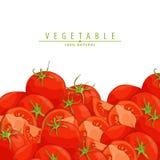 Fresh ripe tomatoes illustration. Group of fresh red tomatoes vector illustration Stock Photography