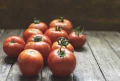 Group of fresh red tomatoes on wooden table. Selective focus, fr Royalty Free Stock Image