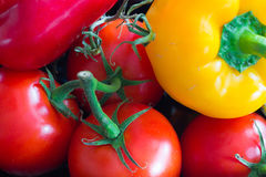 Group of fresh red tomatoes with a yellow and a red paprika. Royalty Free Stock Image
