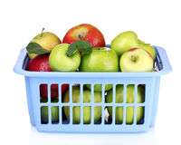 Group of fresh ripe apples in box Royalty Free Stock Photography