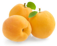 Group fresh ripe apricot Stock Images