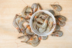 group of fresh shrimp Royalty Free Stock Photography