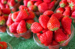 Group of Fresh Strawberry Stock Photo