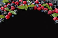 Group of fresh summer berries with basil`s on a black background. Ripe blueberries, raspberries and blackberries. Top view with copy space Stock Photography