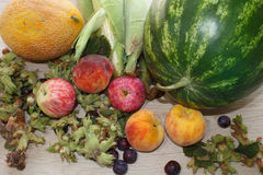 Group Of Fresh Summer Fruits On Wood Table. Mix of Fresh Fruits on wood table. Healthy eating Stock Photos