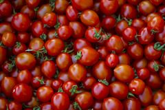 A group of fresh tiny tomatoes. Red group of fresh tomatoes with green leaves at the bazaar Royalty Free Stock Photography