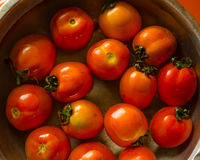Group of fresh tomato in water Royalty Free Stock Images