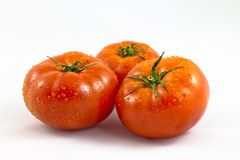 Group of fresh tomatoes. Isolated on white background Stock Photography
