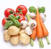 Group of fresh vegetables Stock Images