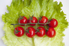 Group of fresh vegetables Royalty Free Stock Photography