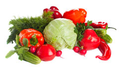 Group of fresh vegetables. Various fresh colorful vegetables over white Royalty Free Stock Image