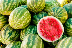Group of fresh watermelons on market. Stock Image