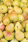 Group of fresh yellow pears. Yellow background with fresh pears stock photography