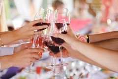 Group of friend toasting with wine for celebration live band in background.  Royalty Free Stock Photos