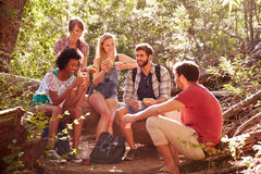 Group Of Friends Breaking For Lunch On Countryside Walk Stock Images