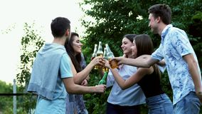 Group of friends clink bottles, drink beer, people dance and hug in the park, evening party. stock footage