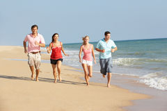Group Of Friends Enjoying Beach Holiday In The Sun Royalty Free Stock Photography