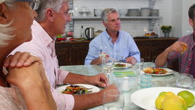 Group Of Friends Enjoying Meal At Home Together stock video footage
