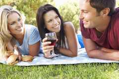 Group Of Friends Enjoying Picnic Together Royalty Free Stock Photos