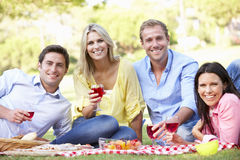 Group Of Friends Enjoying Picnic Together Royalty Free Stock Images