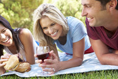 Group Of Friends Enjoying Picnic Together Stock Photography