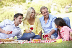 Group Of Friends Enjoying Picnic Together Stock Image