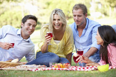 Group Of Friends Enjoying Picnic Together Stock Images