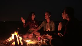 Group of friends hanging out together on the beach. Beautiful two couples. Singing song with guitar, gesturing. Friendship concept. Bonfire at night stock video footage