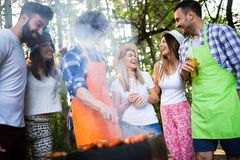 Group of friends having a barbecue party in nature royalty free stock photography