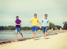 Group of friends having fun on the beach Royalty Free Stock Images