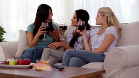Group of friends having fun while drinking red wine stock video footage