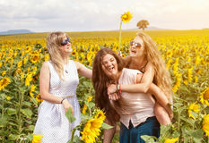 Group of friends having fun outdoors. In a field Stock Photography