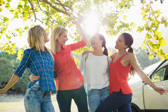 Group of friends having fun in park. Group of happy friends having fun in park on a sunny day stock photos