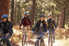 Group friends in helmets riding bikes in a forest, close up Stock Photos