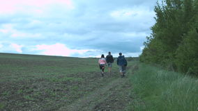 A group of friends are hiking in nature hiking. Young women and men are walking along the field along a row of trees. stock video footage