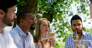 Group of friends interacting with each other while drinking wine stock footage