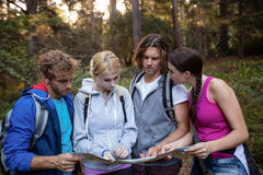 Group of friends looking at the map while hiking Royalty Free Stock Image