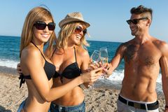 Group of friends making a toast on beach. Royalty Free Stock Photography