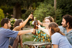 Group of friends making a toast royalty free stock photography