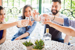 Group of friends making a toast with tequila. Five friends raising their glasses and making a toast with tequila shots during a party outdoors Stock Photos