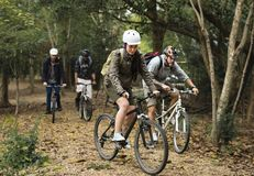 Group of friends ride mountain bike in the forest together stock images