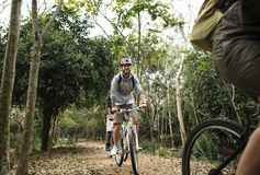 Group of friends ride mountain bike in the forest together royalty free stock images
