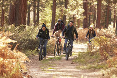 Group of friends riding bikes on a forest path, front view Stock Photo
