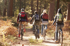 Group of friends riding bikes on a forest trail, back view Stock Image