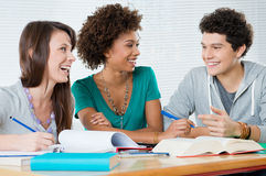 Group Of Friends Studying Together Stock Images
