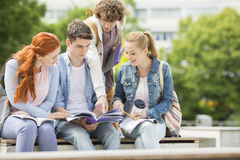 Group of friends studying together at university campus stock photo