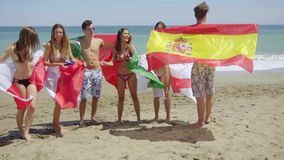 Group of Friends in Swim Suits with Flags at Beach stock video footage