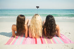 Group of friends in swimsuits Royalty Free Stock Images